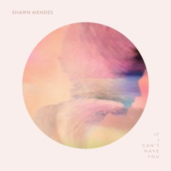 Shawn Mendes - If I Can't Have You